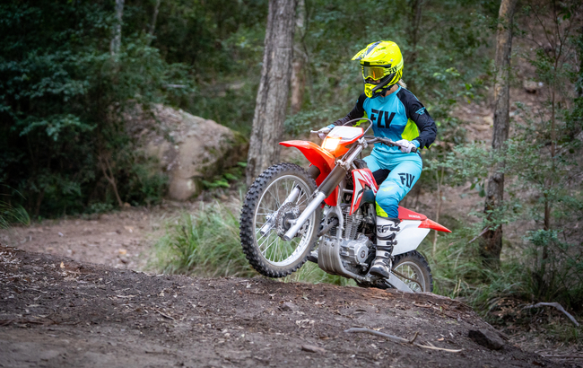 Honda CRF230L motorcycle in forest